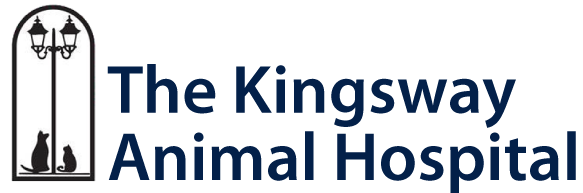 The Kingsway Animal Hospital in Toronto, ON